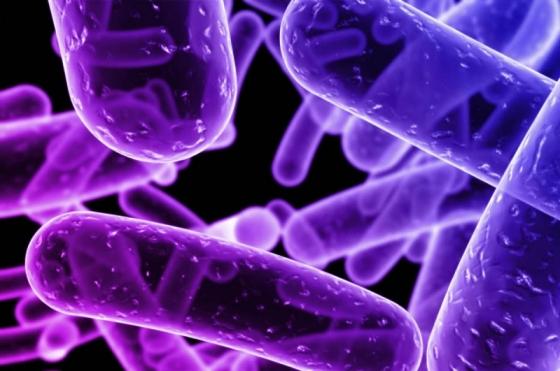 crean_un_biosensor_con_nanotecnologia_que_elimina_bacterias_de_la_comida_800x531_1100